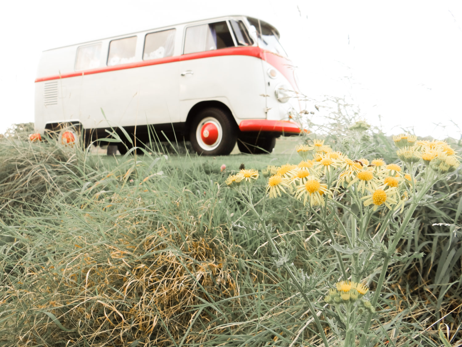 Beautiful Vintage Volkswagen Camper Van Yellow Flowers